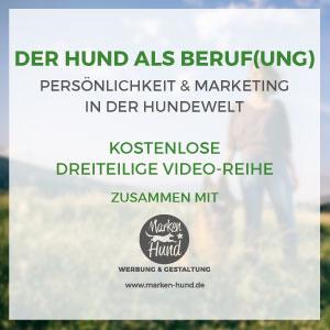 videoreihe-website